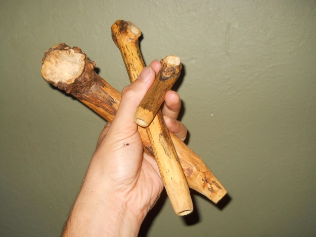 Elderberry Pipes